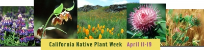 2015 Native Plant Week