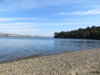 September 19: Tomales Bay State Park with Amelia Ryan